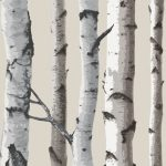 Birch Trees Wallpaper Cream and Silver Fine Decor FD31051