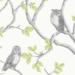 Woodland Owls Wallpaper Green Fine Decor FD40637