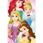 Disney Princess Towel – Pink