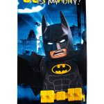 Lego Batman Movie Hero Beach Towel