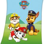 Paw Patrol Trio Fleece Blanket