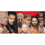 WWE Line Up Beach Towel